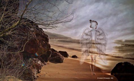 cropped-angel1.jpeg
